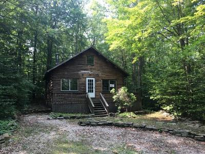 Berkshire County Single Family Home For Sale: 220 Antelope Dr