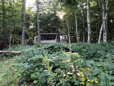 Berkshire County Single Family Home For Sale: 58 Lake Dr