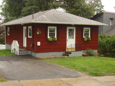 Pittsfield Single Family Home For Sale: 78 Norman Ave