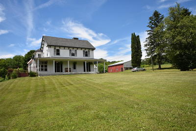 Pittsfield Single Family Home For Sale: 805 Churchill St