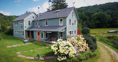 Lanesboro Single Family Home For Sale: 155 Kessler Rd