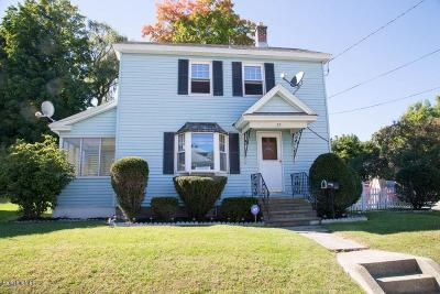 Pittsfield Single Family Home For Sale: 33 Alden Ave
