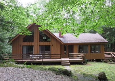 Berkshire County Single Family Home For Sale: 316 Tamarack Trail