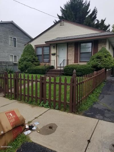 Pittsfield Single Family Home For Sale: 21 Indian St