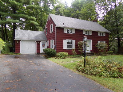 Pittsfield Single Family Home For Sale: 197 Holmes Rd
