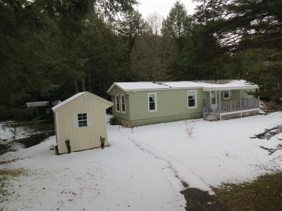 Berkshire County Single Family Home For Sale: 315 Sand Mill Rd