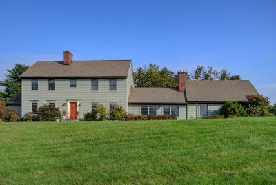 Berkshire County Single Family Home For Sale: 154 Division St