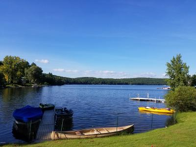 Berkshire County Single Family Home For Sale: 51-E Goose Pond Rd