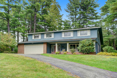 Pittsfield Single Family Home For Sale: 41 Leroi Dr