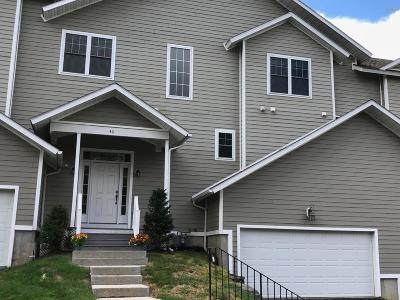 Pittsfield Single Family Home For Sale: 46 Alpine Trail
