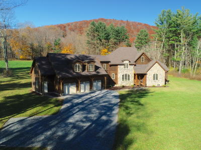 Berkshire County Single Family Home For Sale: 250 West St