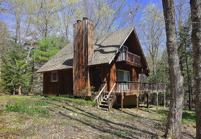 Berkshire County Single Family Home For Sale: 14 Highland Way