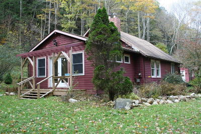 Berkshire County Single Family Home For Sale: 6 Lake Buel Rd