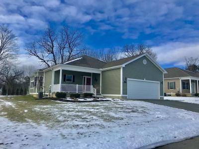 Pittsfield Single Family Home For Sale: 17 Cherry Hill Dr
