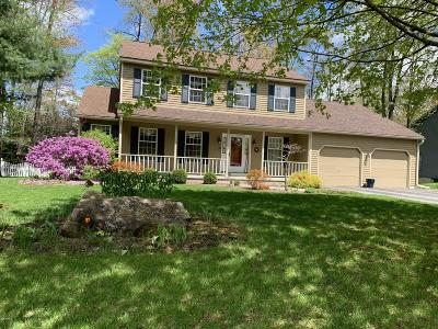 Pittsfield Single Family Home For Sale: 23 Caratina Dr