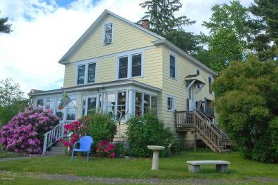 Great Barrington Single Family Home For Sale: 783 Main St
