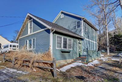 Berkshire County Single Family Home For Sale: 1 Shamrock St