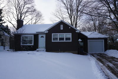 Pittsfield Single Family Home For Sale: 487 Lebanon Ave