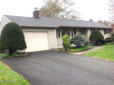 Pittsfield Single Family Home For Sale: 10 Dan Ave