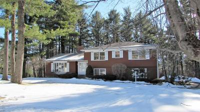 Cheshire, Dalton, Hancock, Hinsdale, Lanesboro, Peru, Pittsfield, Richmond, Windsor Single Family Home For Sale: 73 Leroi Dr