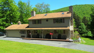 Berkshire County Single Family Home For Sale: 88 Moores Rd