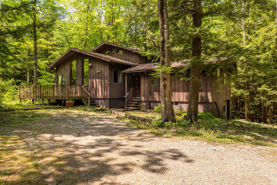 Berkshire County Single Family Home For Sale: 329 Tamarack Trail