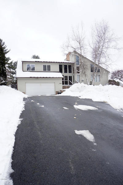 Pittsfield MA Single Family Home For Sale: $525,000