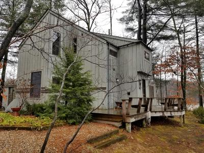 Berkshire County Single Family Home For Sale: 290 Bow Wow Rd