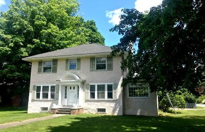 Great Barrington Single Family Home For Sale: 226 Stockbridge Rd