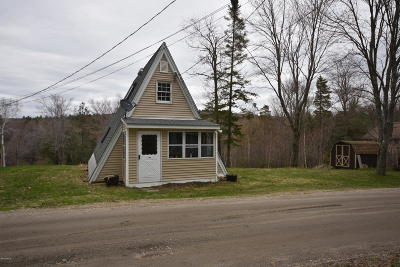 Berkshire County Single Family Home For Sale: 104 Franklin Rd