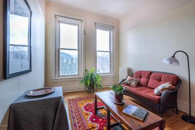 Great Barrington Single Family Home For Sale: 281 Main St