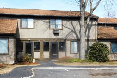 Berkshire County Condo/Townhouse For Sale: 227 South Hemlock Ln #227