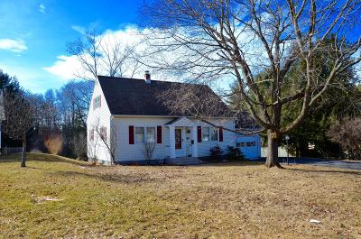 Pittsfield Single Family Home For Sale: 181 Doreen St