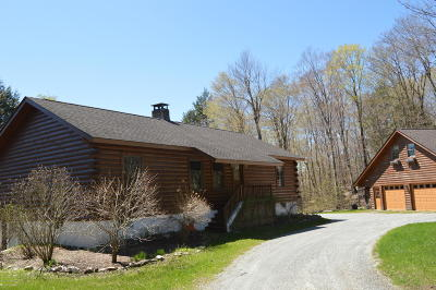 Berkshire County Single Family Home For Sale: 2034 West Center Rd