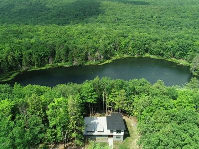 Berkshire County Single Family Home For Sale: 317 Long Pond Rd