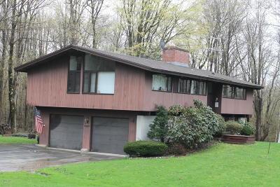 Lanesboro Single Family Home For Sale: 48 Greylock Estates Rd