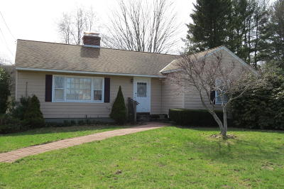 Pittsfield Single Family Home For Sale: 574 Crane Ave