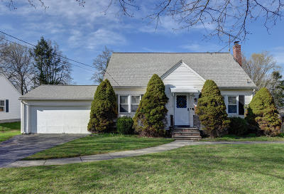 Pittsfield Single Family Home For Sale: 325 Williams St