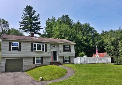 Pittsfield Single Family Home For Sale: 81 Scalise Dr