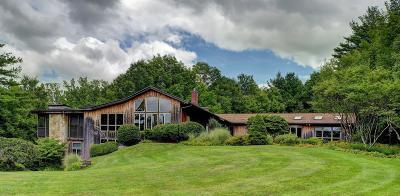 Adams, Clarksburg, Florida, New Ashford, North Adams, Savoy, Williamstown Single Family Home For Sale: 119 Brook Rd