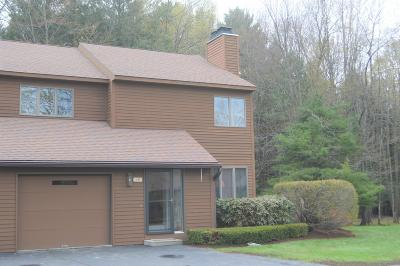 Pittsfield Condo/Townhouse For Sale: 13 Cynthia Ln #13