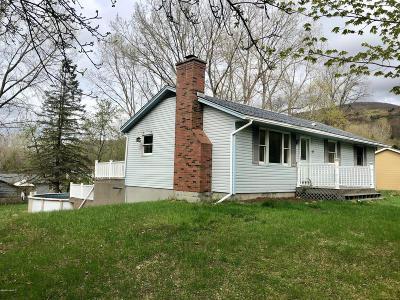 Cheshire, Dalton, Hancock, Hinsdale, Lanesboro, Peru, Pittsfield, Richmond, Windsor Single Family Home For Sale: 63 Devonshire Dr
