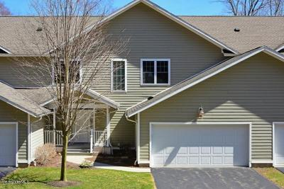 Cheshire, Dalton, Hancock, Hinsdale, Lanesboro, Peru, Pittsfield, Richmond, Windsor Single Family Home For Sale: 99 Alpine Trail
