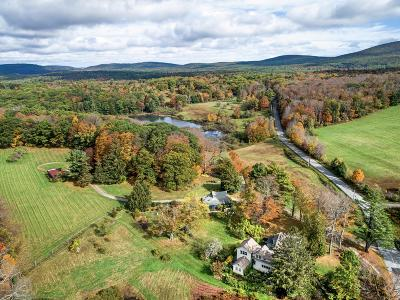 Berkshire County Single Family Home For Sale: 169 East St