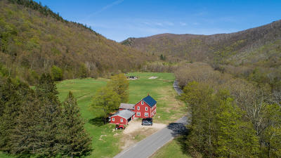 Berkshire County Single Family Home For Sale: 327 River Rd