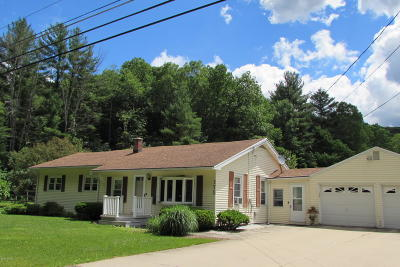 Pittsfield Single Family Home For Sale: 175 Tamarack Rd