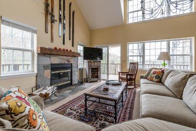 Cheshire, Dalton, Hancock, Hinsdale, Lanesboro, Peru, Pittsfield, Richmond, Windsor Single Family Home For Sale: 9341 Mountainside Dr