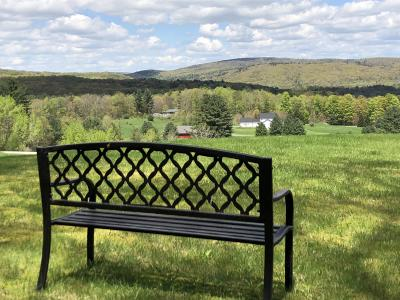 Berkshire County Single Family Home For Sale: 64 West Center Rd
