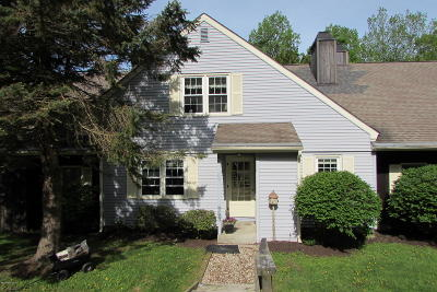 Cheshire, Dalton, Hancock, Hinsdale, Lanesboro, Peru, Pittsfield, Richmond, Windsor Condo/Townhouse For Sale: 1053 Beaver Pond Meadows #105