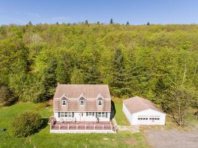 Adams, Clarksburg, Florida, New Ashford, North Adams, Savoy, Williamstown Single Family Home For Sale: 344 Mohawk Trail